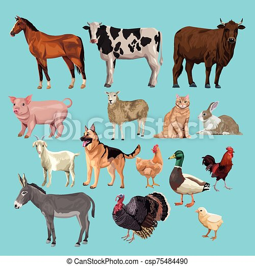 group of animals farm characters - csp75484490