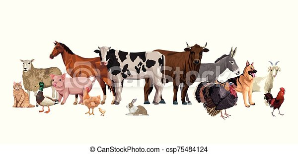 group of animals farm characters - csp75484124