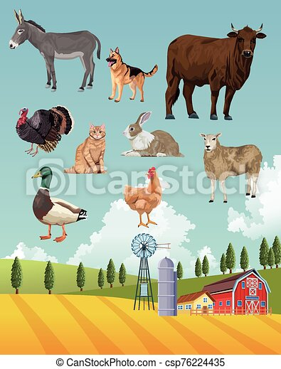 group of animals farm with stable in the camp - csp76224435