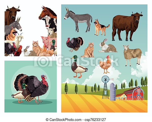 group of animals farm with stable in the camp - csp76233127