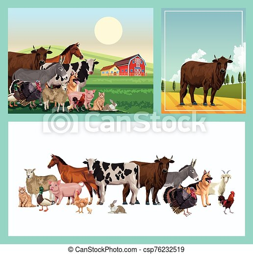 group of animals farm with stable in the camp - csp76232519
