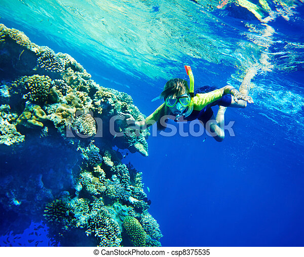 Group of coral fish in blue water. - csp8375535