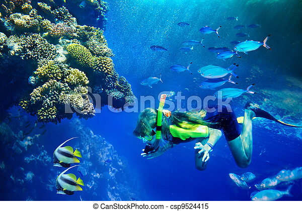 Group of coral fish in blue water. - csp9524415