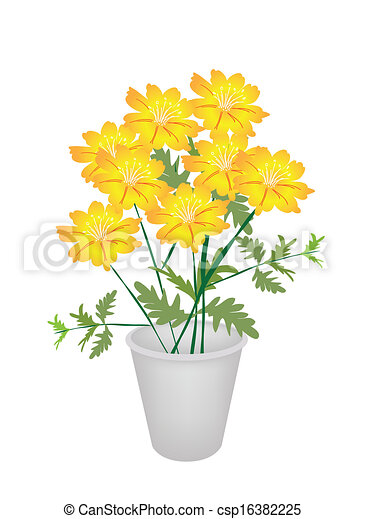 Group of cosmos flowers in a flower pot an illustration yellow group of cosmos flowers in a flower pot csp16382225 mightylinksfo