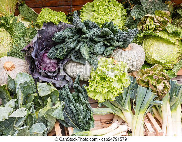 Group of Fresh Organic Assorted Green Vegetables - csp24791579
