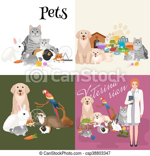 group of pets and veterinary doctor with animals patient eps rh canstockphoto com Pet Sitting Services Clip Art Pet Cat Clip Art