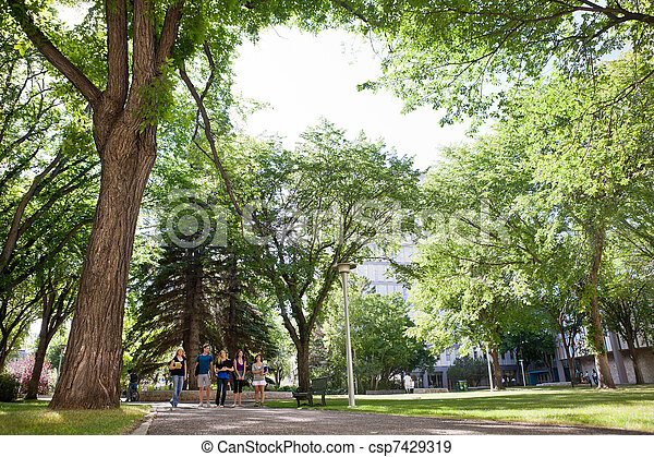 Group of University Students Walking on Campus - csp7429319