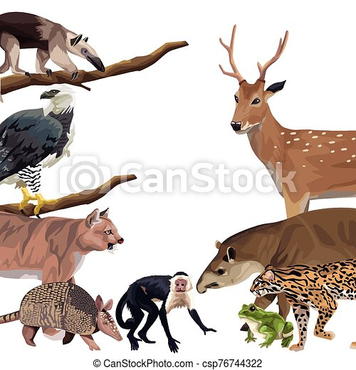 group of wild animals characters - csp76744322