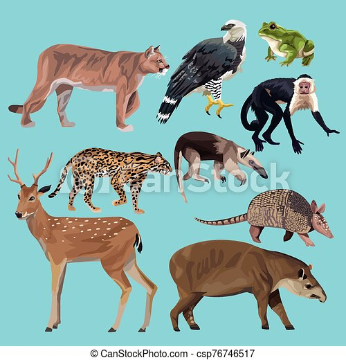 group of wild animals characters - csp76746517