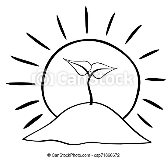 Free Life Cycle Of A Plant Coloring Page, Download Free Clip Art, Free Clip  Art on Clipart Library