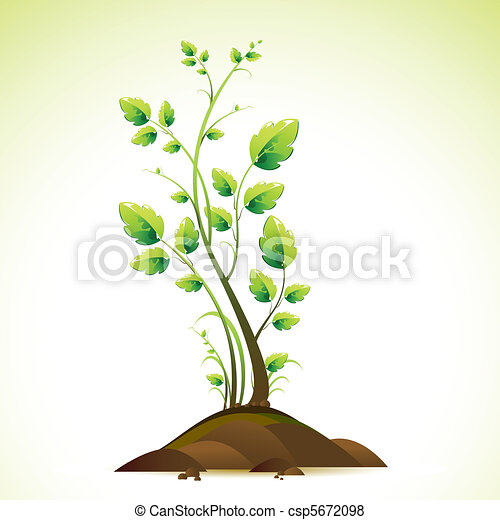 Growing Tree - csp5672098