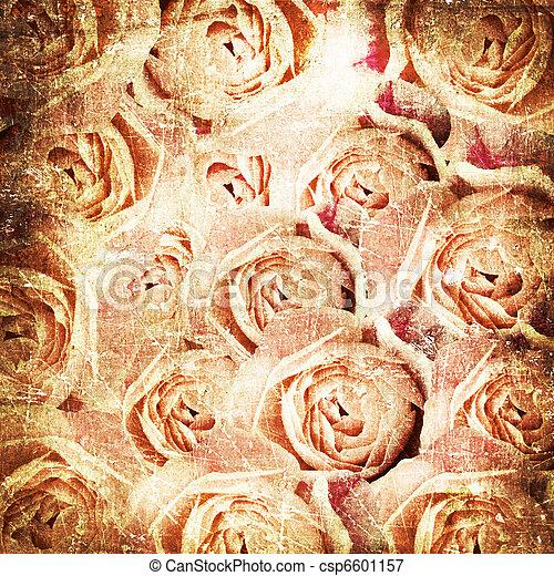 Grunge Beautiful Roses Background ( 1 of set) - csp6601157