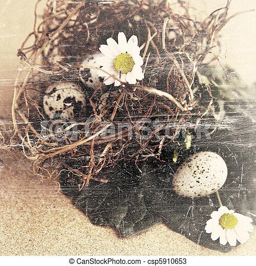 grunge bird eggs in nest. - csp5910653
