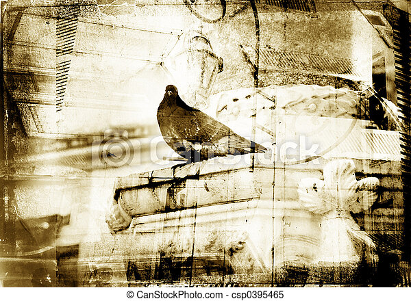 Grunge dove with textured border - csp0395465