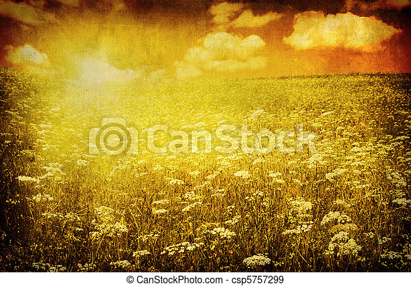 grunge image of green field and blue sky - csp5757299