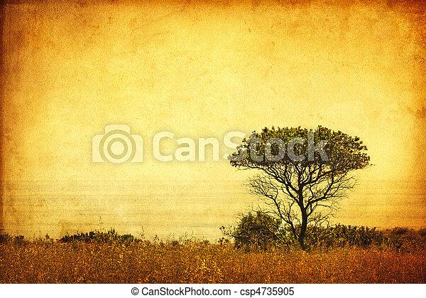 grunge, sepia träd - csp4735905