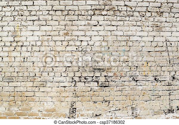 Grunge, terre, peint, taché, mur, crasseux, blanc. Terre ...