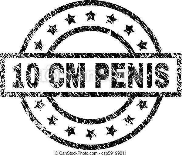 10 cm penis Human penis