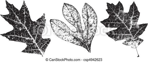 grungy, congés trois, automne - csp4942623