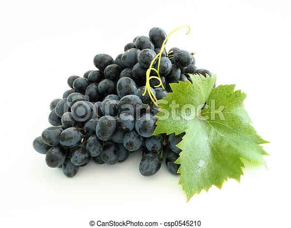 grupo azul, uva - csp0545210