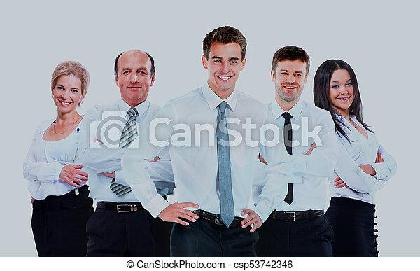 grupo, pessoas negócio, isolado, experiência., team., branca - csp53742346