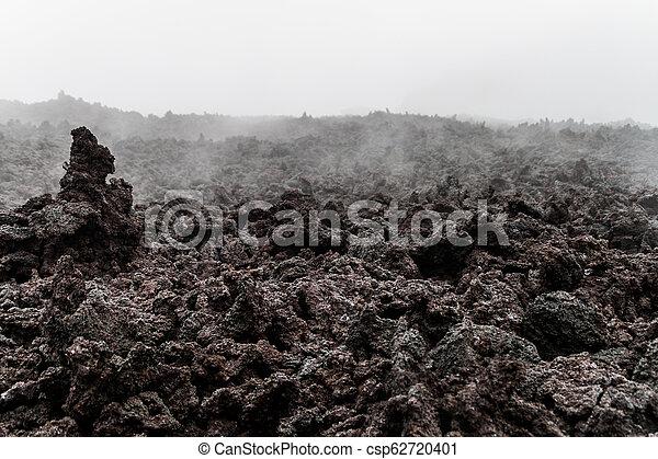 La niebla cubre un campo de lava del volcán Pacaya, Guatema - csp62720401
