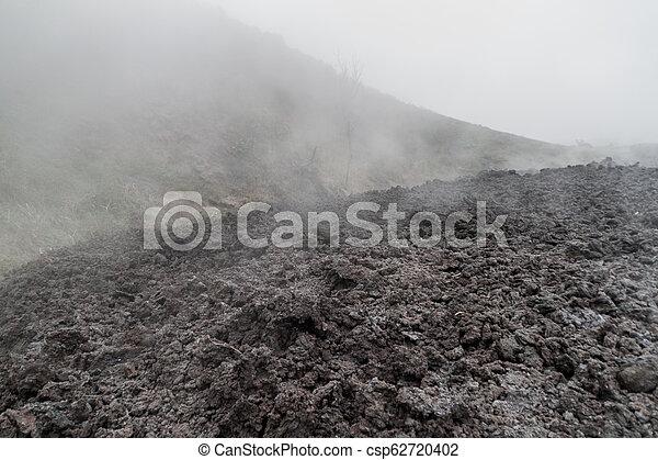 La niebla cubre un campo de lava del volcán Pacaya, Guatema - csp62720402