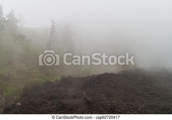 La niebla cubre un campo de lava del volcán Pacaya, Guatema - csp62720417