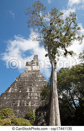 guatemala, tikal - csp17441135