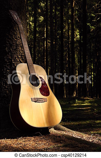 Guitar in forest - csp40129214