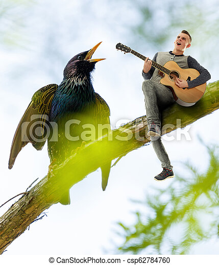 Guitar player and starling - csp62784760
