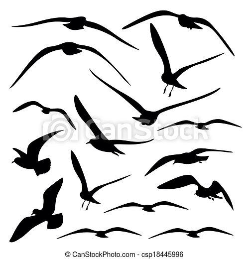 Gull Silhouette, vector  - csp18445996