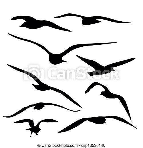 Gull Silhouette, Vector - csp18530140
