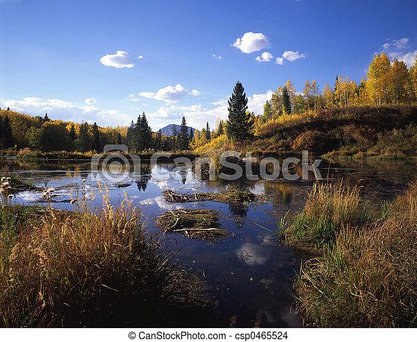 Gunnison Wetlands - csp0465524