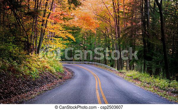 gyönyörű, ősz, autózás - csp2503607