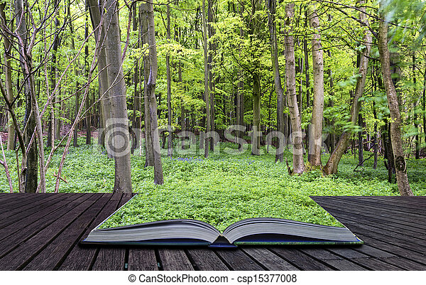 gyönyörű, fogalom, eredet, apródok, kreatív, növekedés, zöld erdő, vibráló, könyv, táj - csp15377008