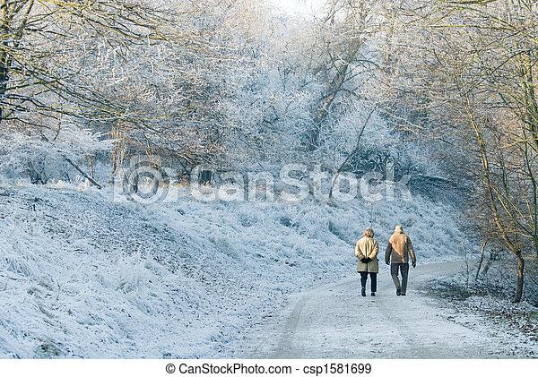 gyönyörű, gyalogló, tél, nap - csp1581699