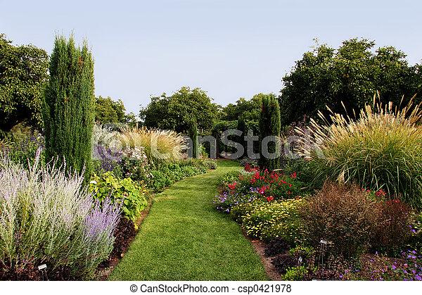 gyönyörű, kert - csp0421978