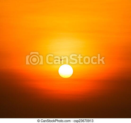 gyönyörű, napnyugta, felül, tenger - csp23670913