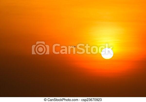 gyönyörű, napnyugta, felül, tenger - csp23670923