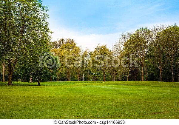 gyönyörű, nyár, parkosít., bitófák, mező, zöld - csp14186933