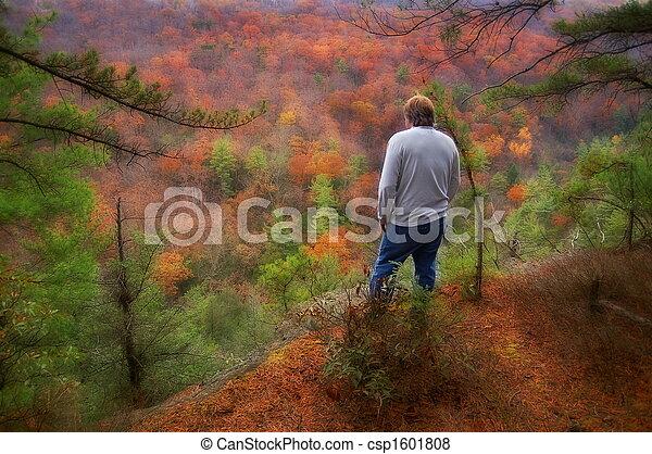 gyönyörű, nyugat, dombok, virginia - csp1601808
