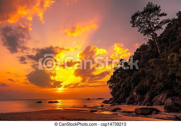 gyönyörű, tropikus, napnyugta - csp14739213