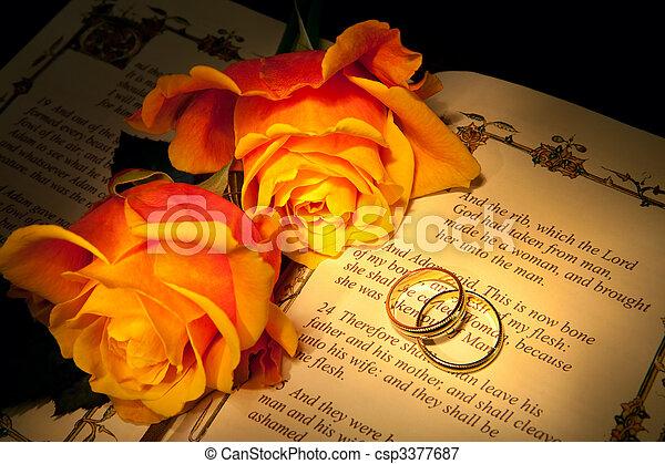 gyűrű, genezis, esküvő - csp3377687