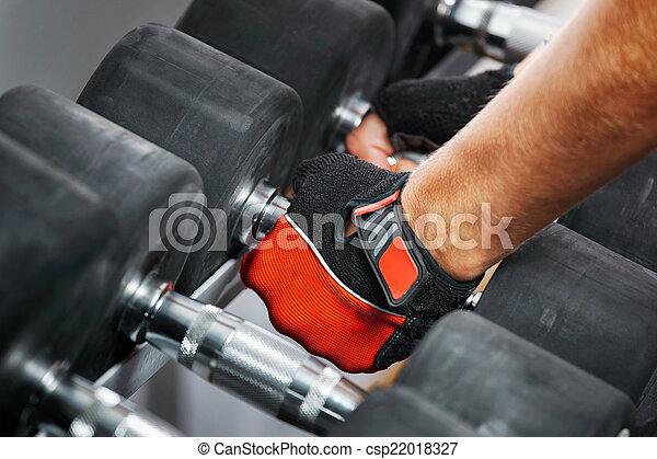 Un potro con pesas de metal en el gimnasio. - csp22018327