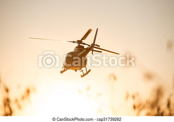 hélicoptère, voler, passanger - csp31739262