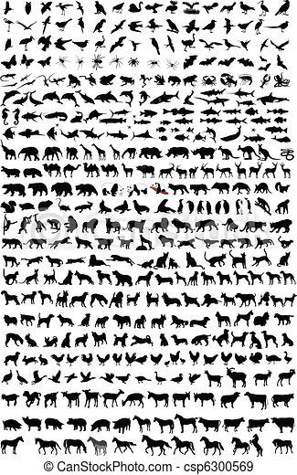 hög, kvalitet, silhouettes, djuren - csp6300569