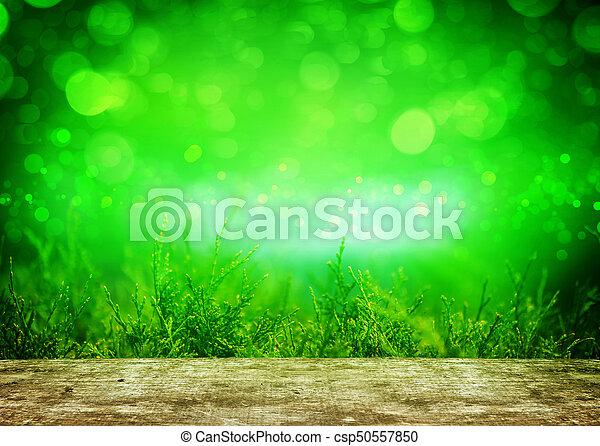Thuja, grüner Hintergrund hinter Holztisch - csp50557850