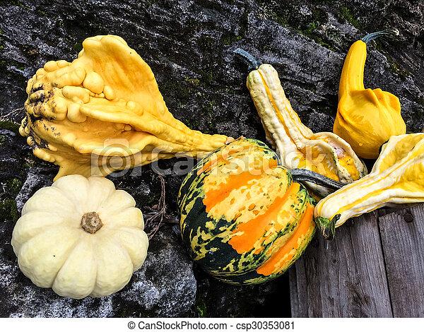 höst, grönsaken, färgrik - csp30353081