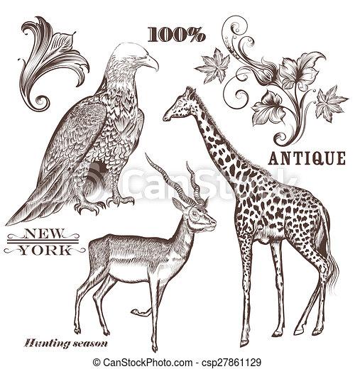 húzott, vektor, állatok, gyűjtés, kéz - csp27861129